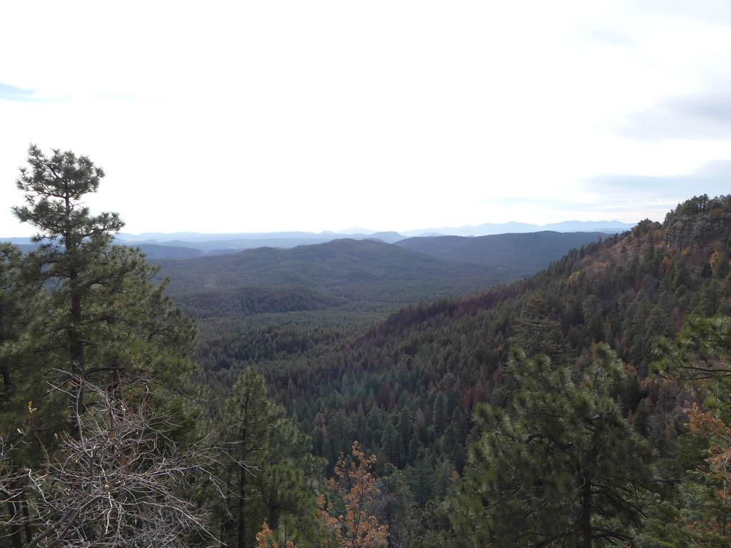 View from the Mogollon Rim Visitor Center