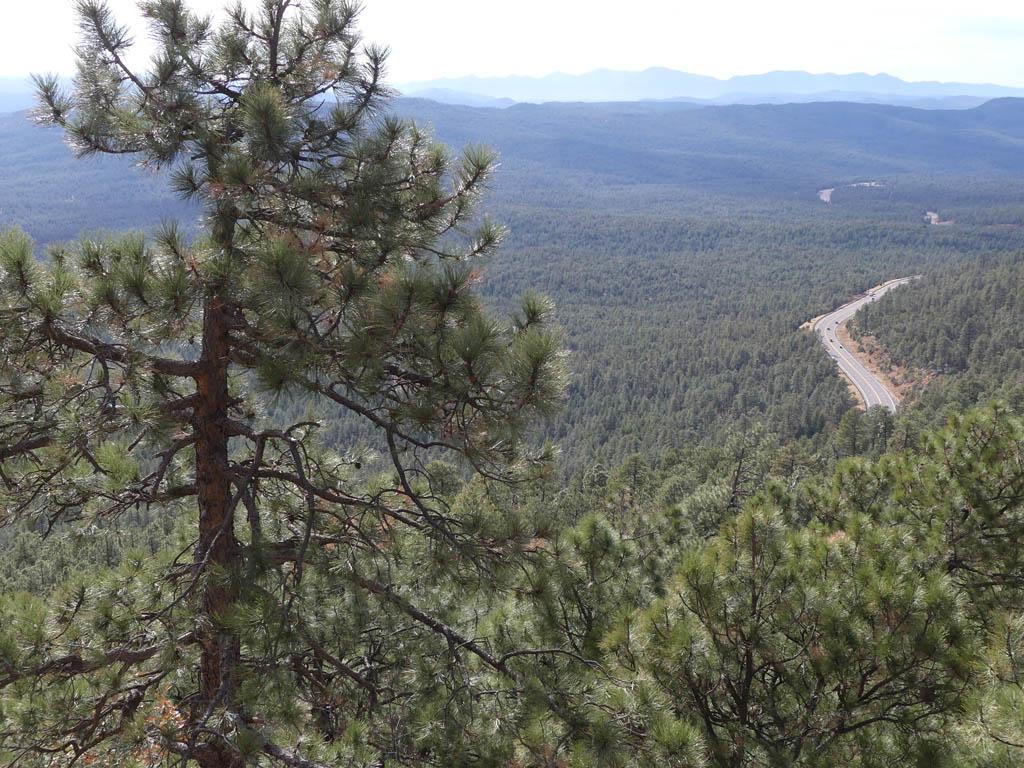 Scenic view near Woods Canyon Lake